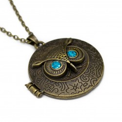 Women's fashion long necklace with bronze owl locket