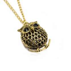 Women's long necklace with round owl pendant